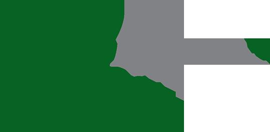 Pampa – tea Retina Logo